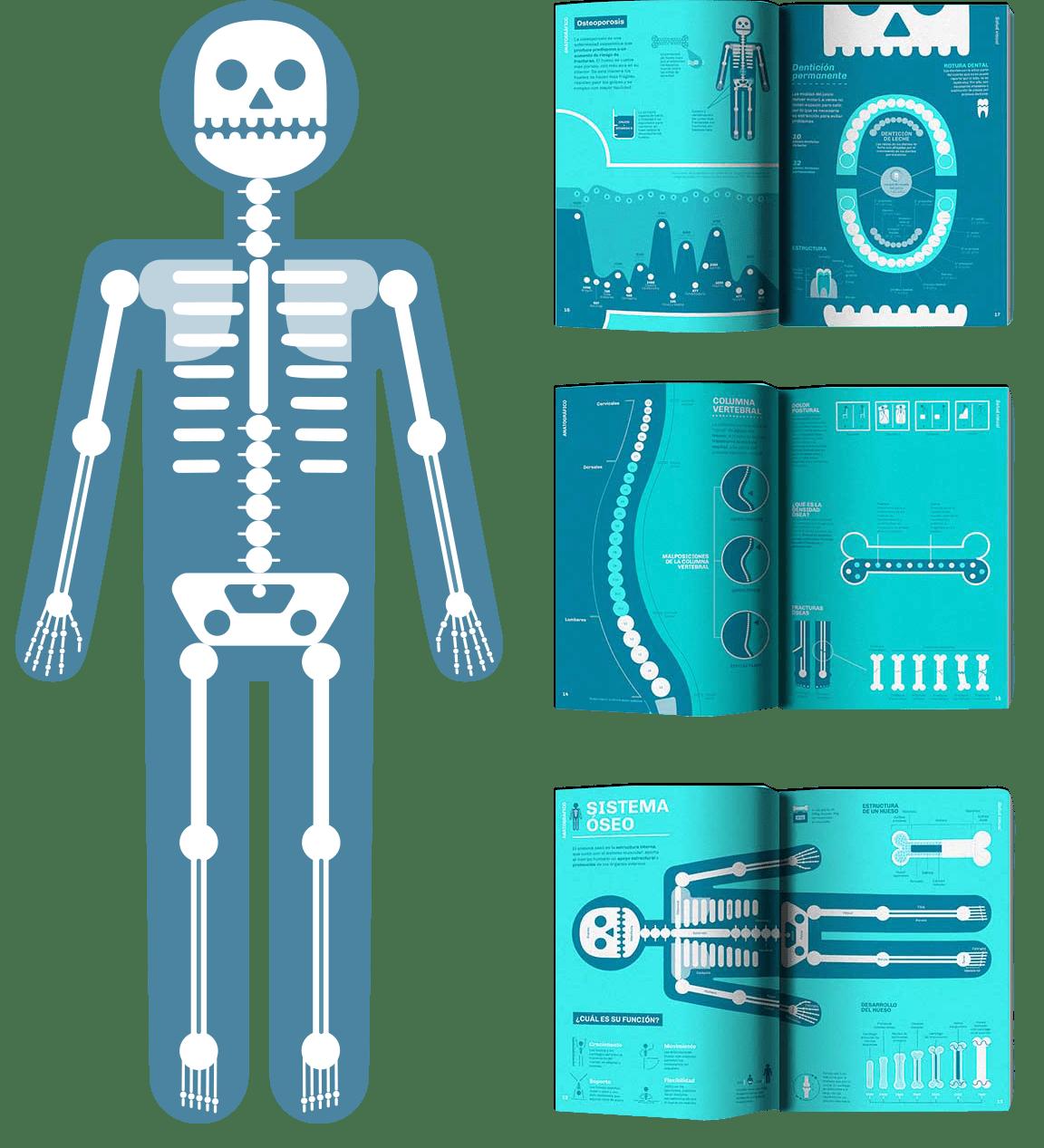 Anatografico-salud-visual-infografias-libro